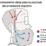 Capelli, peli e luce solare, una nuova ottica sulla disintossicazione.