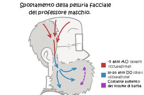 Migrazione_capelli_barba