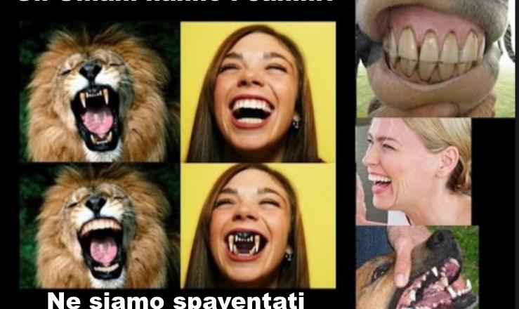 Se l'uomo è frugivoro, perchè ha i denti canini?