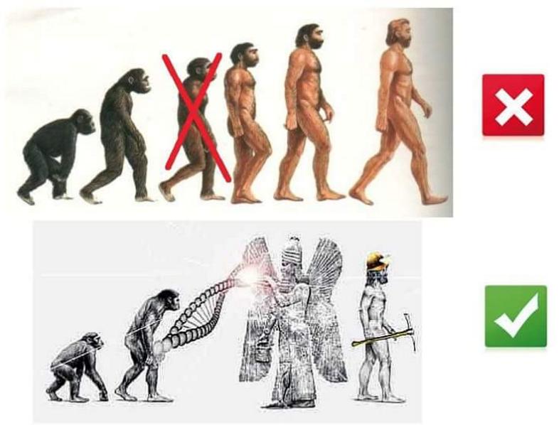 Evoluzione Annunaki