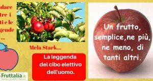 Leggenda mela stark